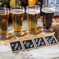 A selection of beers for beer tasting session