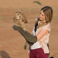 woman holding an owl falconry