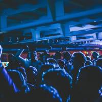 Amsterdam Lounge Cruise