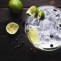 Gin and Tonic Drinks