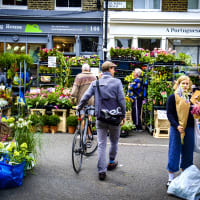 Columbia Road Flower Market **editorial**