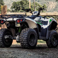 Kawasaki Brute 300
