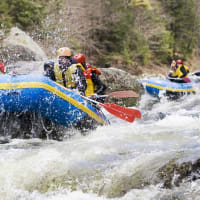 A group doing white water rafting