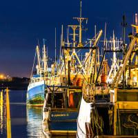 Fish Quay - Boats