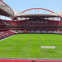 Estadio da Luz Stadium Tour