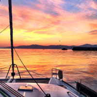 sunset catamaran experience