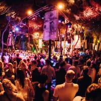 VIP Night Clubbing - Carpe Diem 13 People