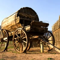 Gold Rush Horse Cart