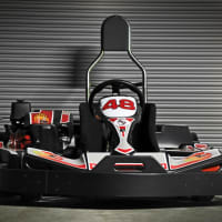 Biz Le Mans 2 Kart