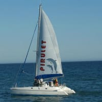 Exclusive Catamaran Cruise - 2 Hours