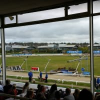 Greyhound Racing Brighton and hove - racing ground