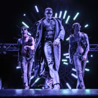 The Dreamboys Show