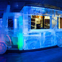 Icebar London - Interior frozen food
