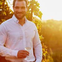 Vineyard Tour & Wine Tasting