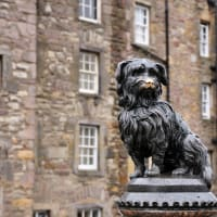**editorial** Greyfriars Bobby