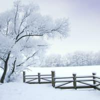 10 Stunning Winter Wonderlands