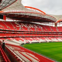 Estadio da Luz Stadium Tour
