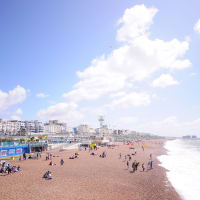Explore Brighton's beach