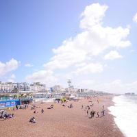 Explore Brighton's beach