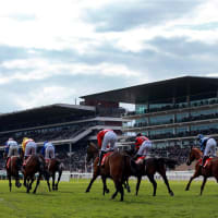 Horse Racing Tickets at Cheltenham Racecourse