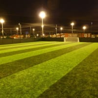 Goals - Chester - football pitch