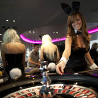 #DISC#Fun Casino Learn To Play - Roulette