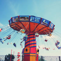 Theme Park - Theme Park Stagging