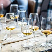 Beginners Whisky Tasting
