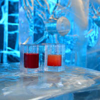 Ice Bar Entry & Cocktail