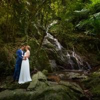 Extreme Wedding Destinations - Daintree Rainforest