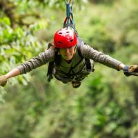 Forest Zip Wire