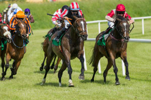 Horse Racing Tickets at Sandown Park Racecourse
