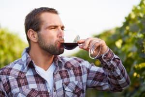 A man tasting wine in vineyard