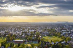 Cheltenham: the highlights