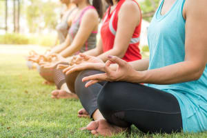 Hen yoga