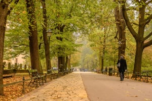 **editorial** Planty Park Krakow