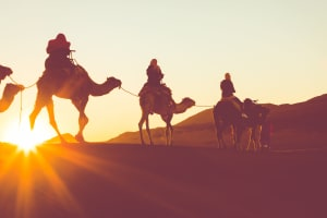 morning camel trekking dubai