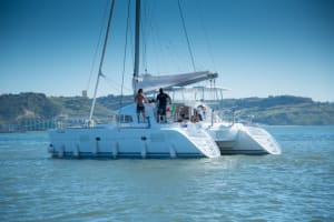 Catamaran boat group