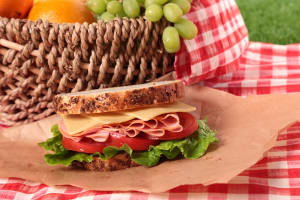 tasty looking picnic sandwich in picnic