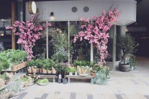 Moyses Steven Flower School