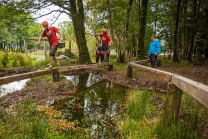 Woodland Assault Course
