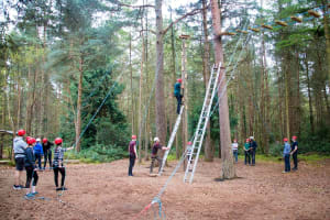 New Forest Activities - High ropes Course