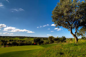 18 Holes at Silves Golf