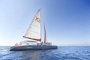 Attraction Catamaran's Boat