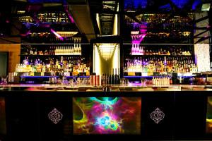Ice Bar Amundsen - interior bar