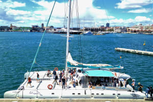 Catamaran Cruise 3 Hours