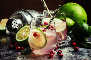 Cocktail class with Gin and tonic in glasses with limes and cranberries