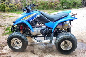 Kymco KXR 250