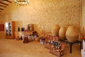 Bodegas Pedro Moreno 1940 - Inside of vineyard