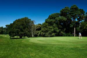 Meyrick Park Hotel - Golf